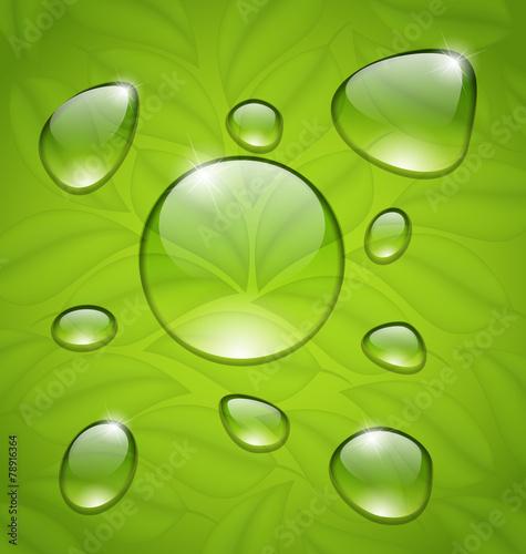 Keuken foto achterwand Paardebloemen en water Water drops on fresh green leaves texture