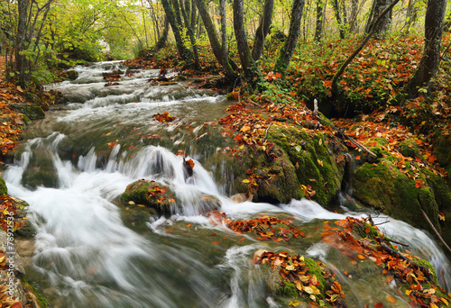 Fototapeten Forest river Waterfall in Plitvice National Park, Croatia, Europe