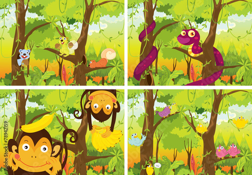 Jungle and animals #78942159