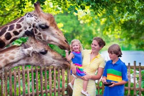 Fotografie, Obraz  Family feeding giraffe in a zoo