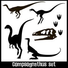 Compsognathus Set