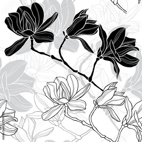 czarno-biala-magnolia