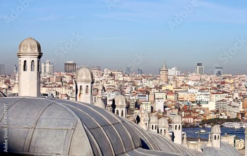 Garden Poster Madrid Galata Tower in Istanbul, Turkey