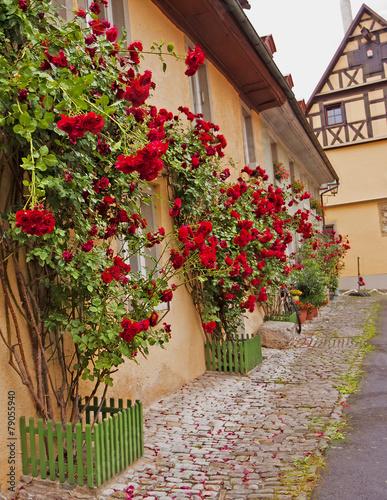 typowa-dekoracja-scian-domow-i-ulic-citi