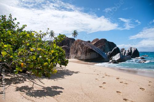 Foto op Plexiglas Caraïben Attractive Beach at Virgin Gorda in the Caribbean