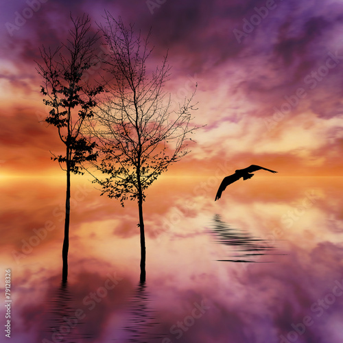 Poster Crimson Beautiful landscape with birds