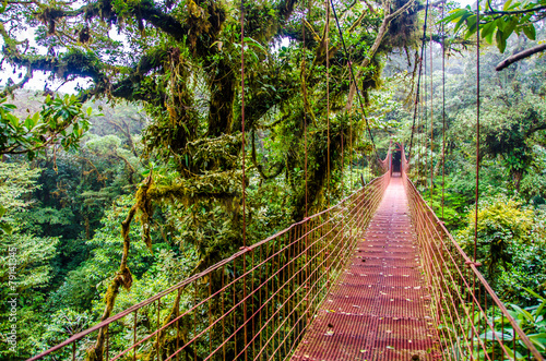 Most w dżungli - Kostaryka - Monteverde