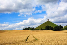 Butte Du Lion In Waterloo, Bel...