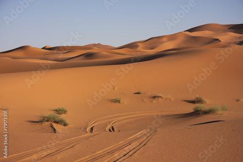 Poster Afrique Marocco - dune di sabbia