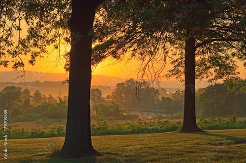 Fotografia Foggy Sunrise