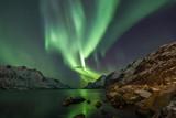 Fototapeta Na ścianę - Incredible Aurora Borealis over night sky in Arctic