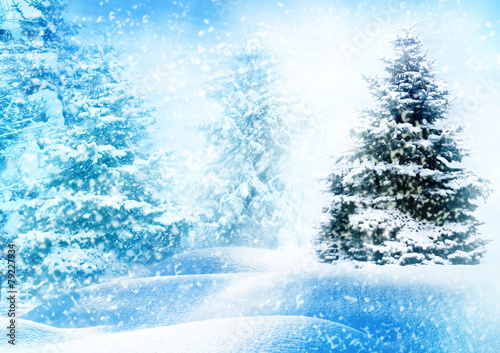 Photo Stands Light blue Christmas tree in snow