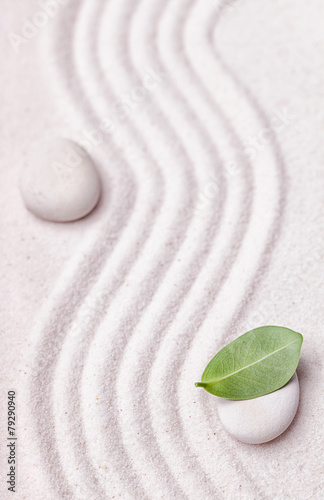 Tuinposter Stenen in het Zand Zen garden with a wave lines in the sand with relaxing white sto