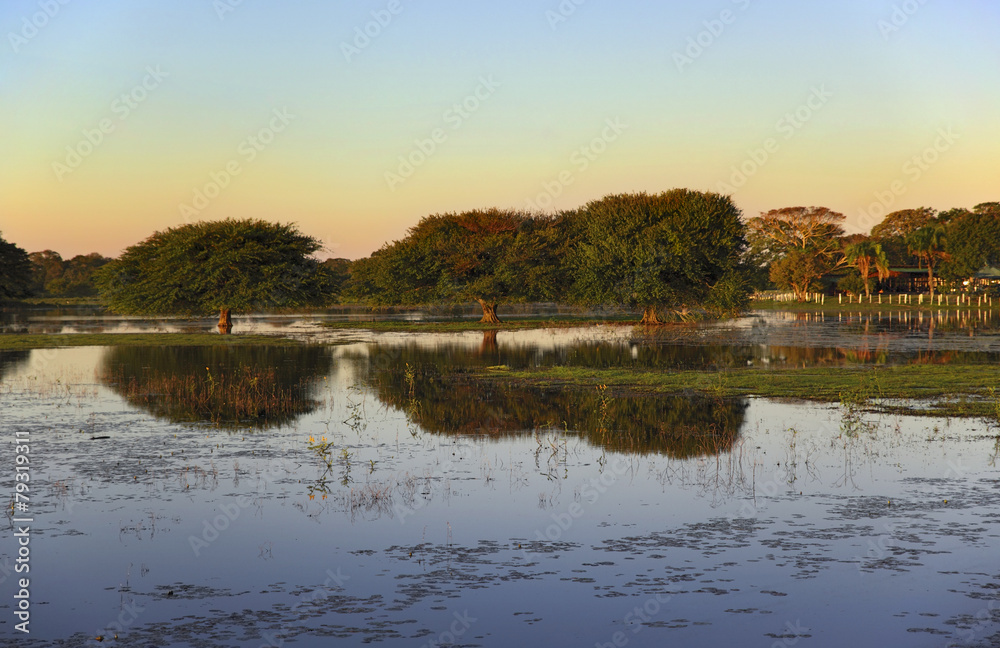 Fotografija  Colorful sunset in Pantanal - Brazil