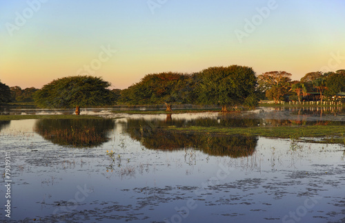 Fotografia  Colorful sunset in Pantanal - Brazil