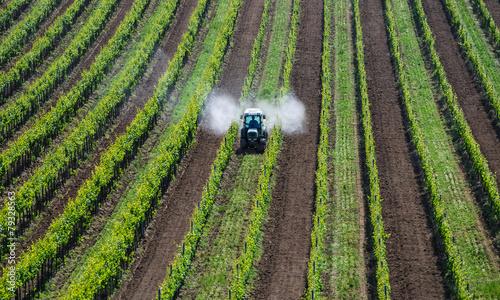 Fotografía  Traktor sprueht Pestizide im Weingarten