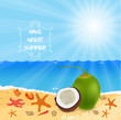 Vacation to Summer with coconut fresh