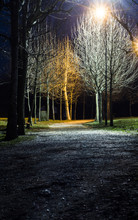 Path Night