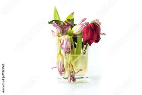 A Vase Full Of Withered And Dead Flowers Buy This Stock Photo And