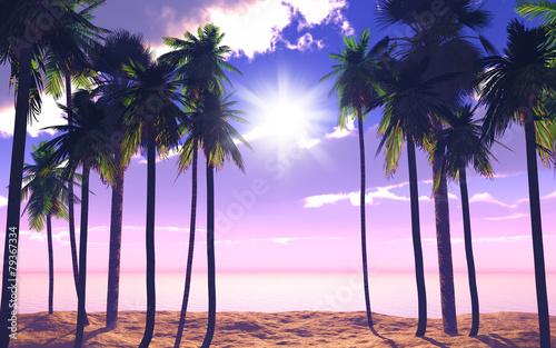 Printed kitchen splashbacks Beige 3D palm trees and ocean