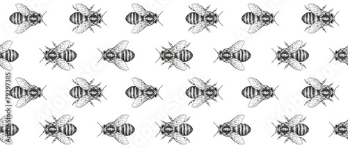 Cotton fabric Bees texture. Seamless pattern. Decorative ribbon