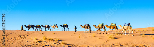 Spoed Foto op Canvas Kameel Camel caravan on the Sahara desert in Morocco