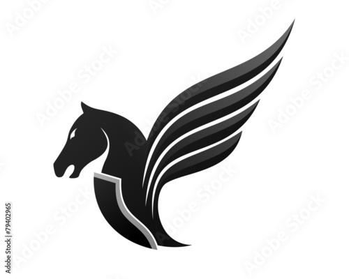 Pegasus Horse Flying Canvas Print