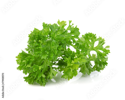 Fotografía  green leaves of parsley isolated on white background