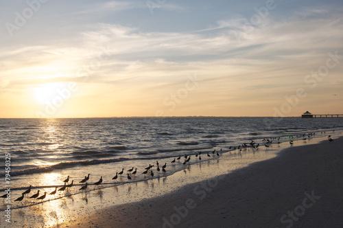 Foto op Aluminium Inspirerende boodschap Sonnenuntergang am Beach von Fort Meyers
