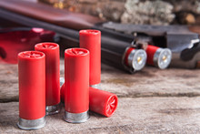 12 Gauge Shotgun Shells With S...