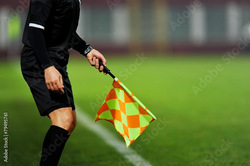 Fotografering  Assistant referee in action