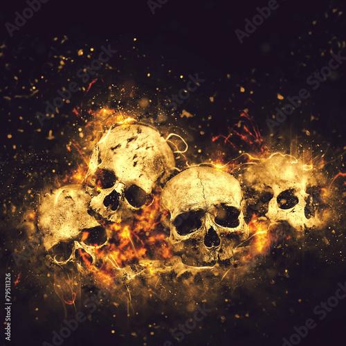 Czaszki i kości