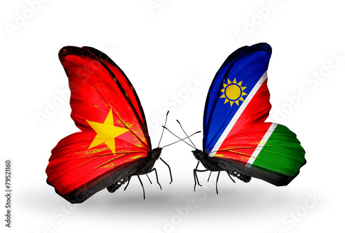 Fotografie, Obraz  Two butterflies with flags Vietnam and Namibia