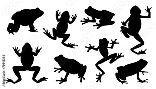 frog silhouettes Wallpaper Mural