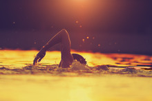 Swimming In Sunset/sunrise Tro...