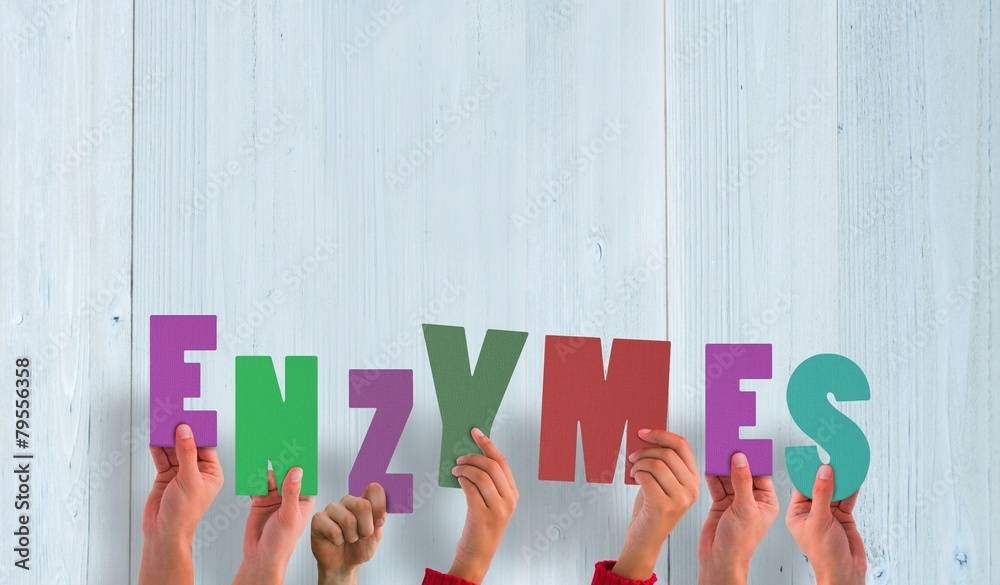 Fototapeta Composite image of hands holding up enzymes