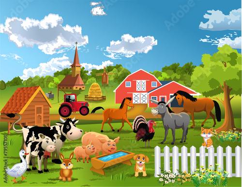 Foto  farm animals