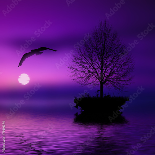 Spoed Foto op Canvas Violet Beautiful landscape with birds