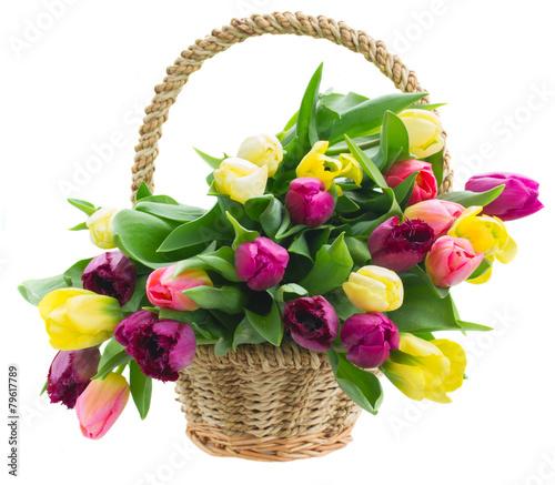 bukiet-zoltych-i-fioletowych-kwiatow-tulipanow