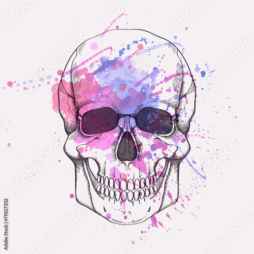 Poster Crâne aquarelle Vector illustration of human skull with watercolor splash