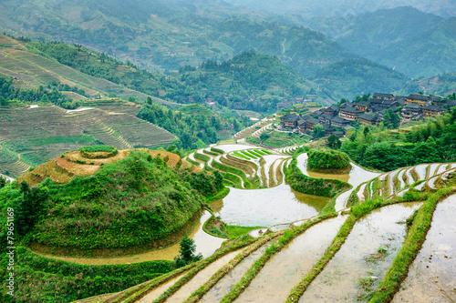 Canvas Prints Guilin Guilin, China Rice Terraces
