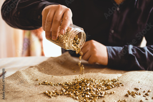 Fotografia, Obraz  male miner sitting at table and pouring gold out of glass jar