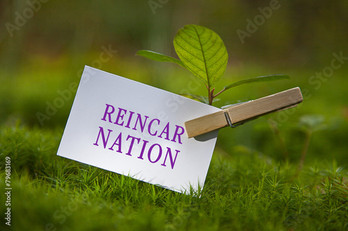 Reincarnation Slika na platnu