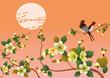 sakura .Evening in the garden blooming cherry and birds