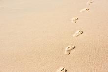 Human Footprints On Beach Sand