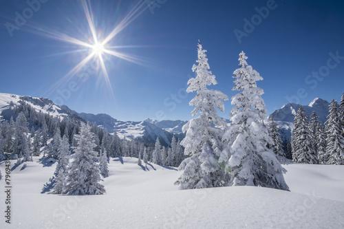 Wall Murals Photo of the day Winter Bergpanorama