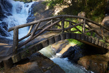 Bridge Of Logs Across A Stream In A Forest In Vietnam
