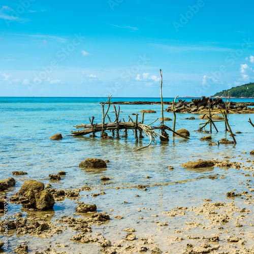 Wall Murals Green coral beautiful exotic beach in Thailand with fishing gear at low tide