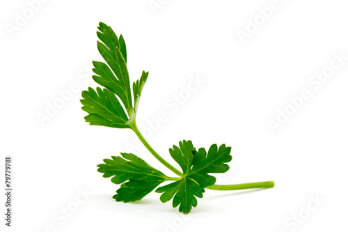 Fototapeta green leaves of parsley isolated on white background