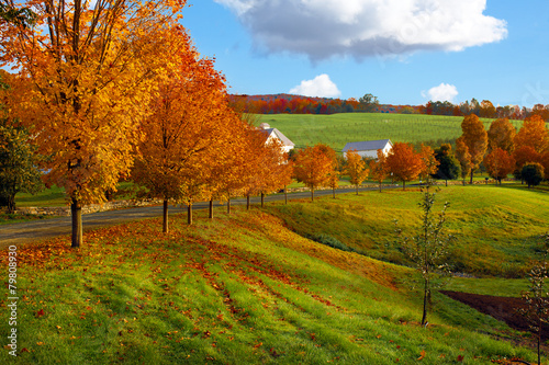 Photo  Vermont fall landscape of rolling hills with orange foliage